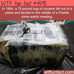 25 Facts Are so Full of WTF True facts that are very difficult to believe.True facts that are very difficult to believe. Wow Facts, Wtf Fun Facts, True Facts, Funny Facts, Random Facts, Strange Facts, Crazy Facts, Random Stuff, The More You Know