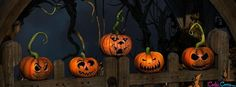 background, Halloween, and pumpkins image Halloween Cover Photo Facebook, Halloween Cover Photos, Halloween Timeline, Cover Pics For Facebook, Fb Cover Photos, Twitter Cover, Cover Picture, Cover Pages, Cover Art