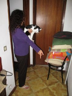 O Palhetas na Foz: Figueira da Foz: Gato salvou dona que caiu e desma...