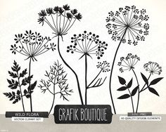 Wild Herbs Flowers silhouette vector clip art, card, label, diy invitation