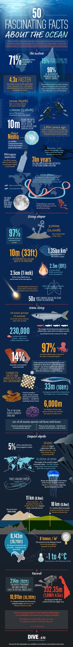 50 Fascinating Facts about the Ocean #infographic #Ocean #Facts