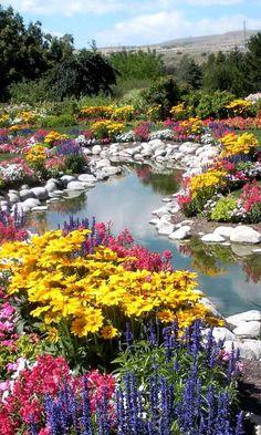 Ein Traum von Blumen  entlang eines kleinen Baches. Es ist so idyllisch schön, die Vielfalt sticht besonders heraus.