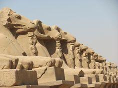 The Rams of Amun Ra, Karnak Temple, Luxor Egypt