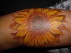 sunflower - if i ever got a tattoo... it would be this