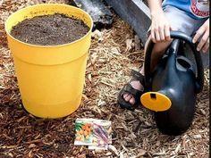 Чем подкормить свеклу и морковь народными средствами Small Farm, Garden Hose, Canning, Outdoor, Garten, Outdoors, Home Canning, Outdoor Living, Garden