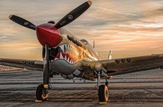 Planes of Fame air museum P-40