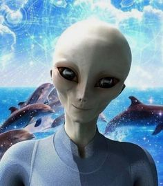 Video documentary shows NASA was probably warned off by aliens when they discovered alien spacecraft on the moon. Aliens Und Ufos, Ancient Aliens, Alien Photos, Unidentified Flying Object, Alien Concept Art, Star Family, Alien Creatures, Alien Art, This Is A Book