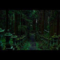 Instagram【yutofujimatsu】さんの写真をピンしています。 《熊本の超パワースポットへ撮影に!! めちゃオススメ(=´∀`) #fukuoka #hkt48 #concurrentpost #夜景 #自然 #風景 #カメラ #デブ活 #Nikontop #nikon #d5500 #熊本 #阿蘇 #上色見熊野座神社 #一眼レフ #村重杏奈 #穴井千尋 #福岡 #Japan #instasize #love  #fashion #本日の1枚》