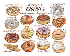 Name: Donuts (landscape) This colorful fine art print features a selection of delicious donuts. A perfect print for the kitchen, or a gift for your Delicious Donuts, Yummy Food, Turkey Burger Recipes, Cute Food Drawings, Food Sketch, Poses References, Guacamole Recipe, Food Illustrations, Cake Illustration