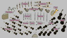 Orchestra Sections Instruments