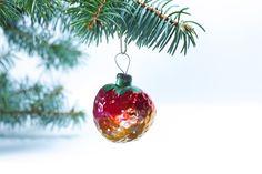 Kostenlose Bilder Weihnachten Baum Dekoration Form Erdbeere . UDSSR von www.tOrange-de.com Tags - #Baum #Weihnachten #Grün #Wald #Neu #Nadeln #Glas #Duft #Lichter #Rarität #Gelb #Rot #Frisch #Verzierung #weiß #Hintergrund #Freude #Winter #Wartezeit #Überraschung #blau #Kugel #Feiertag #Sowjet #Postkarte #Jahr #Geschichte #Antiken #UDSSR #Niederlassungen #Dekoration #Spielwaren #alt #Kiefer #Retro-