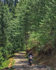 Spring in Himachal Pradesh. What a time to ride up there! Also monsoons in kerala. Awesome time to ride here too. Watch this feed. A good ride coming up :) #kerala Tag your pics and videos with @wheelsguru to be featured. Follow #wheelsguru @shahnawazkarim  click the link in the bio #advrider #adventure #dualsport #adv #enduro #makelifearide #advaddicts #moto #offroad #advlife #instamotor #dualsportlife #touratech #rideandshare #wanderlust #sizematters #nodirtnoglory #motolife #racetrack…