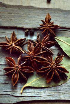 Scopri le virtù dell'anice stellato: aroma, gusto e benessere.