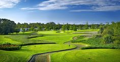 Read our guide to playing the Fancourt Outeniqua Golf Course in South Africa. Eagle Golf Tours is ATOL Protected. Golf Tour, Us Travel, Golf Courses, Tours, Garden, Wine, Garten, Lawn And Garden, Gardens
