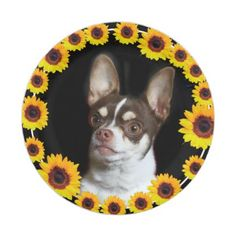 #Chihuahua and Sunflowers  dog paper plates - #Petgifts #Pet #Gifts #giftideas #giftidea #petlovers