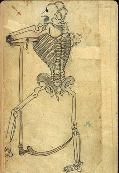 A drawing in ink and light-gray wash of a skeleton leaning on a scythe. One of six leaves of anatomical drawings appended to a Persian translation of an Arabic medical compendium. Anonymous Persian Anatomical Illustrations, Muhammad Akbar. Undated and unsigned, probably 18th-century, India.