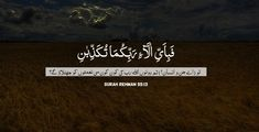 Quran and Hadith quotes about Namaz, Durood, Shukr, Patience etc. Inspirational Islamic Quotes which can change a life of a believer. Hadith Quotes, Urdu Quotes, Funny Quotes, Inspirational Quotes In Urdu, Best Islamic Quotes, Quran Quotes In English, Imam Ghazali Quotes, Quran Urdu, Online Quran