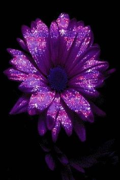 Purple Glitter Flower