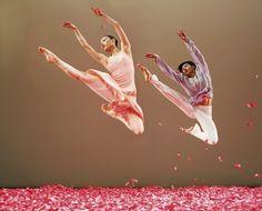 Whisper of Flowers - Cloud Gate Dance Theatre of Taiwan