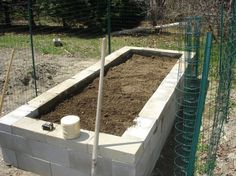 I'm thinking concrete blocks might be easier than building wooden raised beds