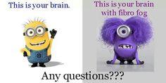 Have you? #fibromyalgiaquotes