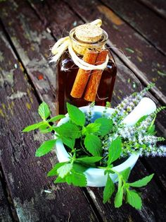 Herbs, Gardening, Lawn And Garden, Herb, Horticulture, Medicinal Plants