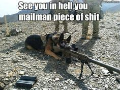 """See You In Hell Mailman. That would be my dog Max. He'd lay under the mail drop and get pegged everytime. He'd jump up barking and growling, I'd be laughing my ass off, and he'd walk over to me raise up and get eyeball to eyeball It was like he was saying: """"Asshole it wasn't that funny. STFU!"""" True story still lamfao. RabidWolf"""