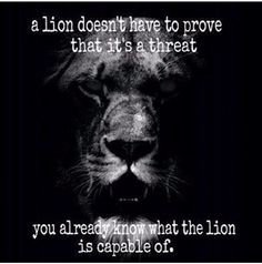 Be like this lion!❤️