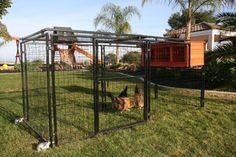 Rugg'egg'Ranch Mobile Chicken Coop Spring Fling - BLINQ