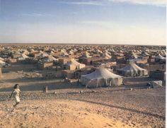 La Fedissah denuncia la violación de derechos humanos en el Sahara Occidental - http://gd.is/QEbghJ