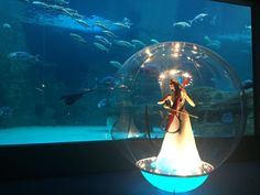 Whether you need to impress 20 or 2 000 guests, the Two Oceans Aquarium is the best function venue in Cape Town. Ocean Aquarium, Cape Town, Oceans, Two By Two, Events