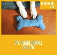 DIY: Denim Crinkle Dog Toy! Got a dog that is oddly obsessed with cat toys? So do we. So we did an easy do-it-yourself for a crinkle toy for your pup!