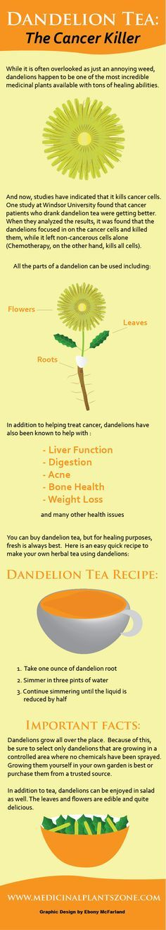 Dandelion Tea The Cancer Killer Infographic
