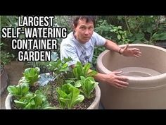 Largest Self Watering Container Garden Lasts a Month Without Watering (Interesting. Wish I was rich... lol... I would put this on a wooden trundler (a small frame on casters) so I could move it around. Deb)