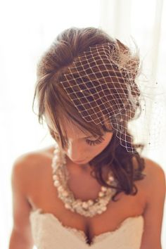 super cute bird cage veil with hair half up and half down!