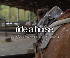 Ride a Horse