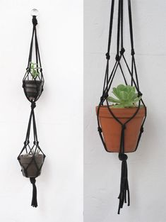 tutorial for a hanging plant garden by More Design Please