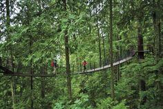 Visita Vancouver, Columbia Británica | Recorridos, vacaciones y festividades en Vancouver | Viajar desde México