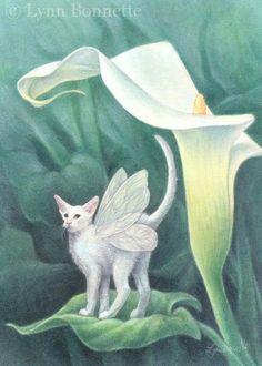 """ Calla Lily Kitty "" by Lynn Bonnett"