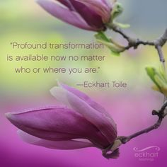 """""""Profound transformation is available now no matter who or where you are."""""""