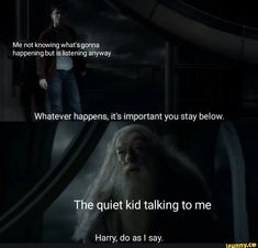 Whatever happens, it's important you stay below. The quiet kid talking to me Harry, do as I say. – popular memes on the site iFunny.co #harrypotter #movies #harry #potter #whatever #happens #important #stay #the #quiet #talking #do #say #pic