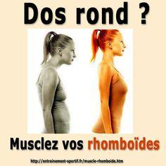 Les exercices de #musculation pour les #rhomboïdes redressent le #dos voûté http://entrainement-sportif.fr/muscle-rhomboide.htm