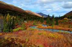 All Things Autumn Photo Challenge - ViewBug.com