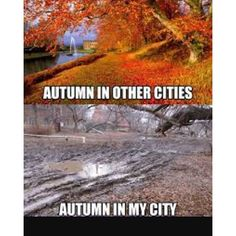"""""""#true #lol #autumn #fall #leaves"""" Photo taken by @oct._31_4ever on Instagram, pinned via the InstaPin iOS App! http://www.instapinapp.com (11/04/2015)"""