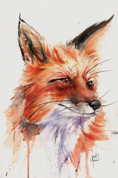Fox Study in Watercolor by justinprokowich on DeviantArt