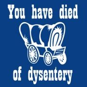 You Have Died of Dysentery - You bought 1350 lbs of this shirt but you can only carry 200 back to the wagon.