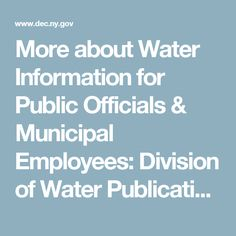 More about Water Information for Public Officials & Municipal Employees:  Division of Water Publications - NYSDEC DOW Small Business Publications
