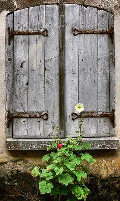 Doors and Hollyhocks