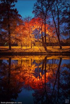 Reflection of Autumn's Light
