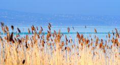 Siófok, Balaton